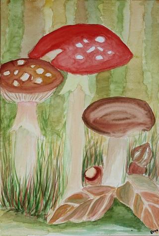 paddenstoelen-strekenvanerna.nl